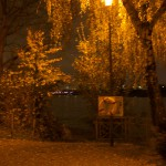 Das Rheinufer im Morgengrauen