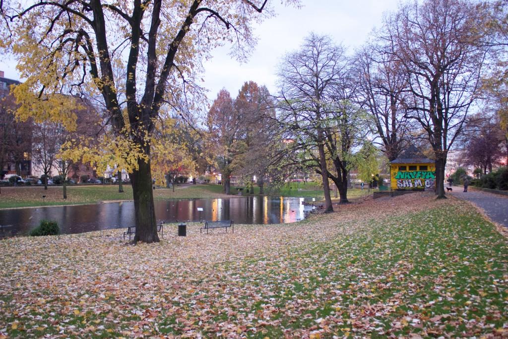Der Park am Theodor-Heuss-Ring, einfachmalraus.net